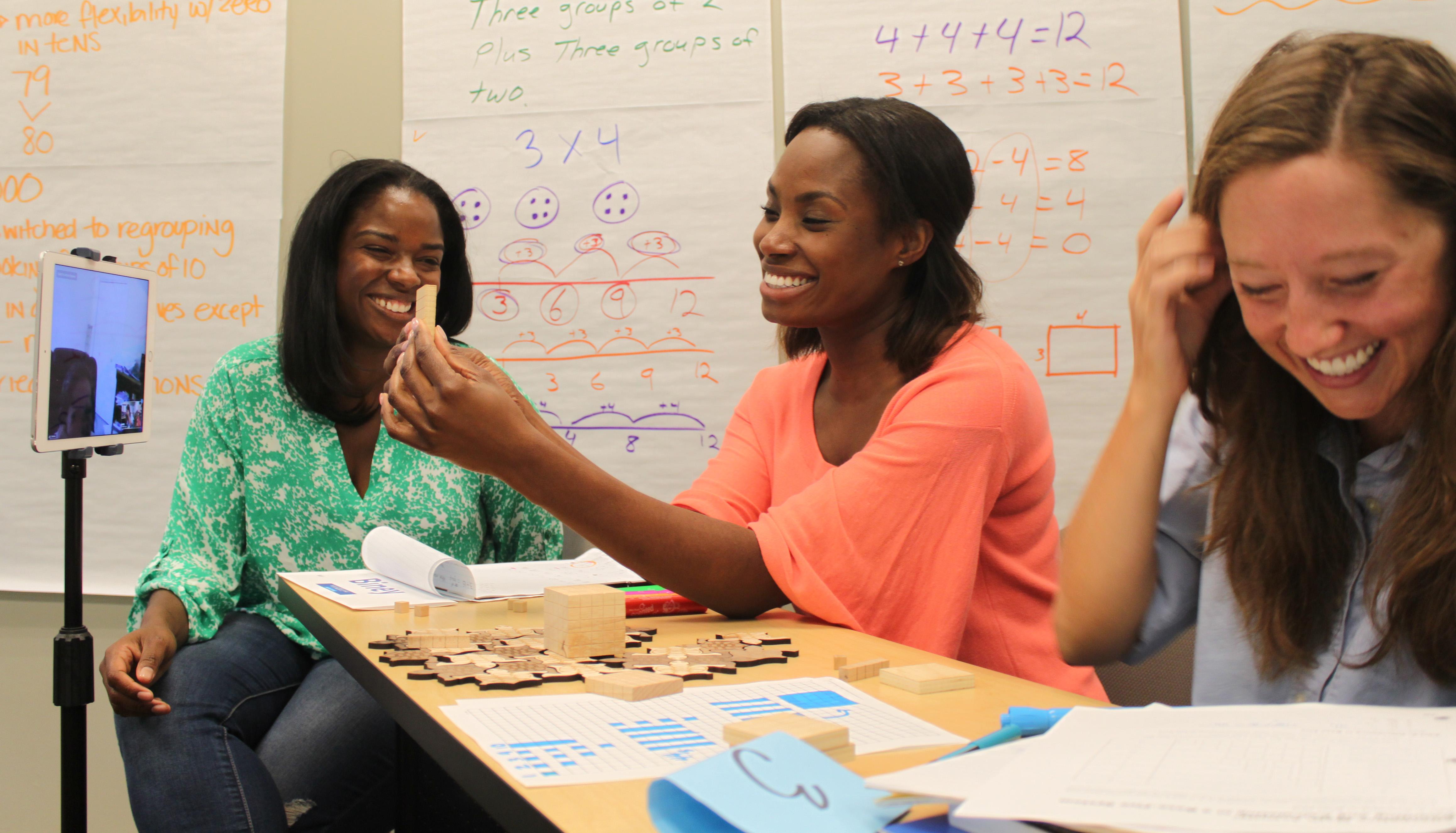 Developing Mathematical Ideas Institutes